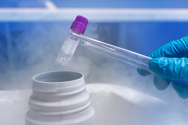 embriyo dondurma işlemi nasıl yapılır